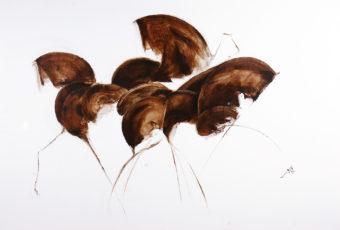 Horse 9 (2013) Fariba Bahrami 32 in. x 48 in. Oil on canvas