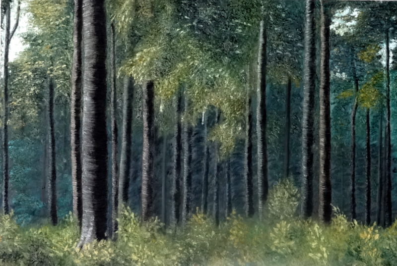 Foggy Green Forest (2014) Mahvash Joorabchi 32 in. x 48 in. Oil on canvas